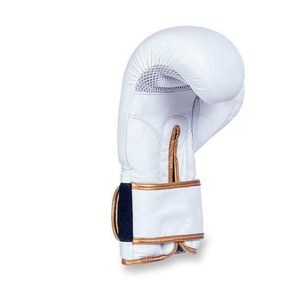 Boxerské rukavice kožené DBX BUSHIDO DBD-B-2 stojící