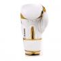 Boxerské rukavice DBX BUSHIDO DBD-B-2 v1 2