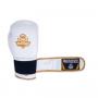 Boxerské rukavice kožené DBX BUSHIDO DBD-B-2 pásek