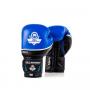 Boxerské rukavice kožené DBX BUSHIDO DBD-B-2 v2