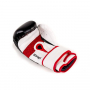 Boxerské rukavice DBX BUSHIDO DBD-B-2 v3 detail 1