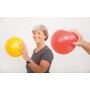 Overball Gymnic workout
